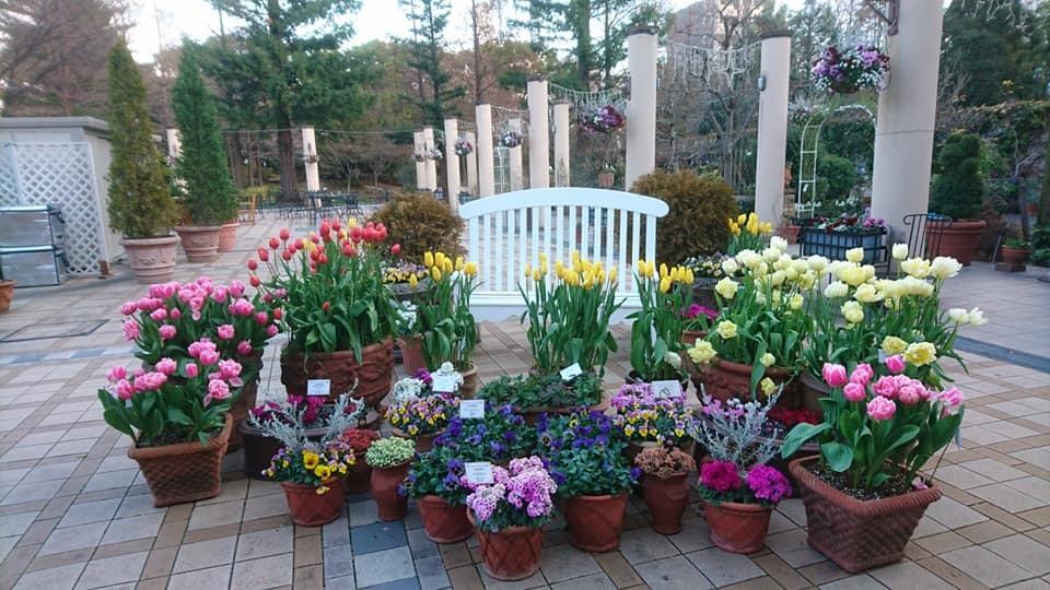 久屋大通庭園フラリエさんにて演奏させて頂きます!_f0373339_11495742.jpg