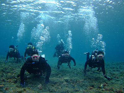 碧い海とカメに、大興奮の10人でした\(^o^)/_b0189640_11381392.jpg