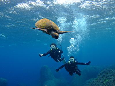 碧い海とカメに、大興奮の10人でした\(^o^)/_b0189640_11382693.jpg