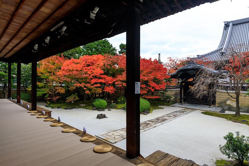紅葉が彩る京都2019 秋色の妙顕寺_f0155048_23514724.jpg