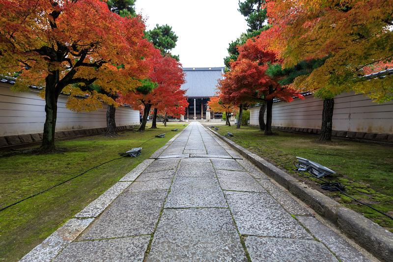 紅葉が彩る京都2019 秋色の妙顕寺_f0155048_23523398.jpg