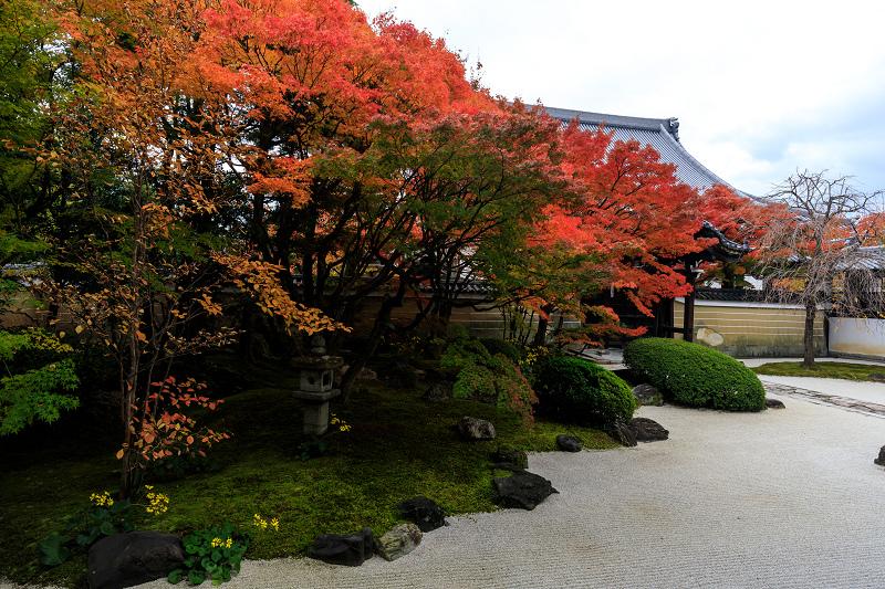 紅葉が彩る京都2019 秋色の妙顕寺_f0155048_23535664.jpg