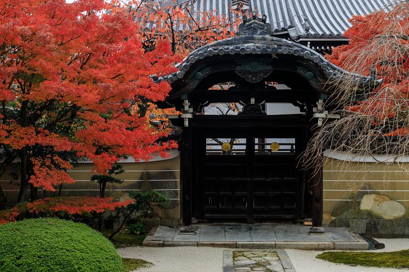 紅葉が彩る京都2019 秋色の妙顕寺_f0155048_23554522.jpg