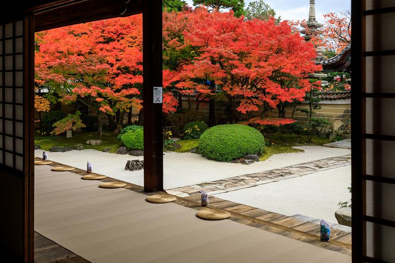 紅葉が彩る京都2019 秋色の妙顕寺_f0155048_23555455.jpg