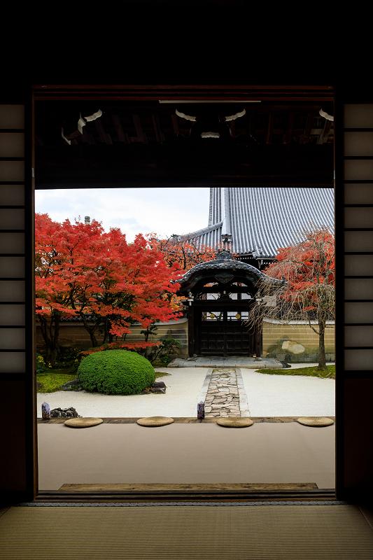 紅葉が彩る京都2019 秋色の妙顕寺_f0155048_23562133.jpg