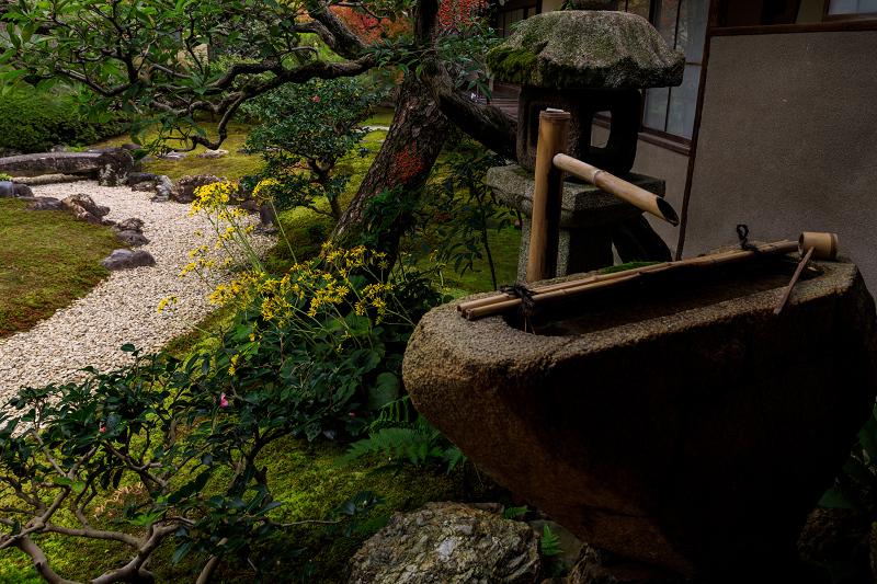 紅葉が彩る京都2019 秋色の妙顕寺_f0155048_23563526.jpg