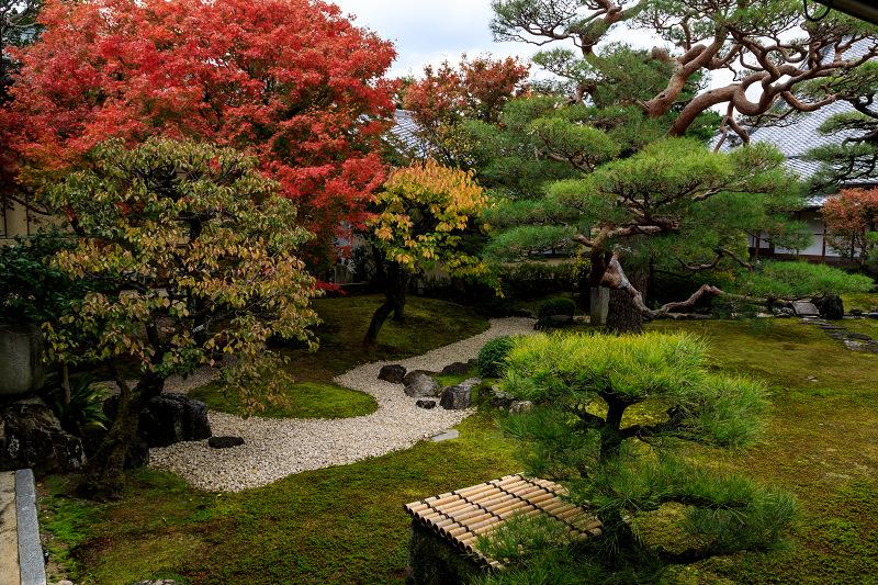 紅葉が彩る京都2019 秋色の妙顕寺_f0155048_23564969.jpg
