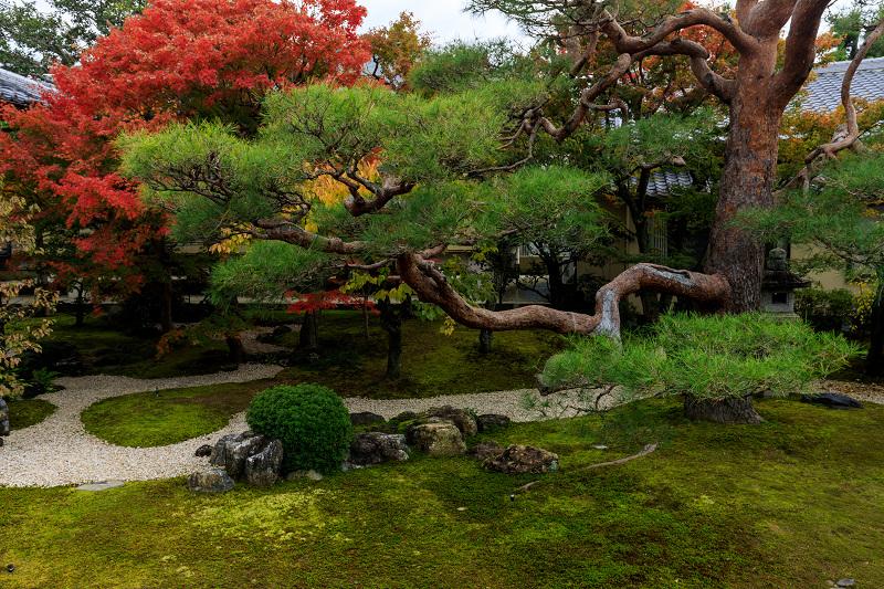 紅葉が彩る京都2019 秋色の妙顕寺_f0155048_23572498.jpg