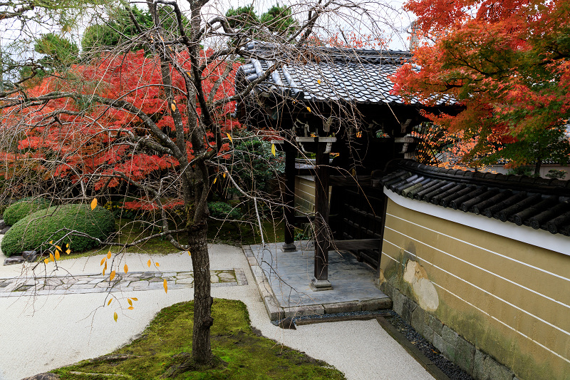 紅葉が彩る京都2019 秋色の妙顕寺_f0155048_23581383.jpg