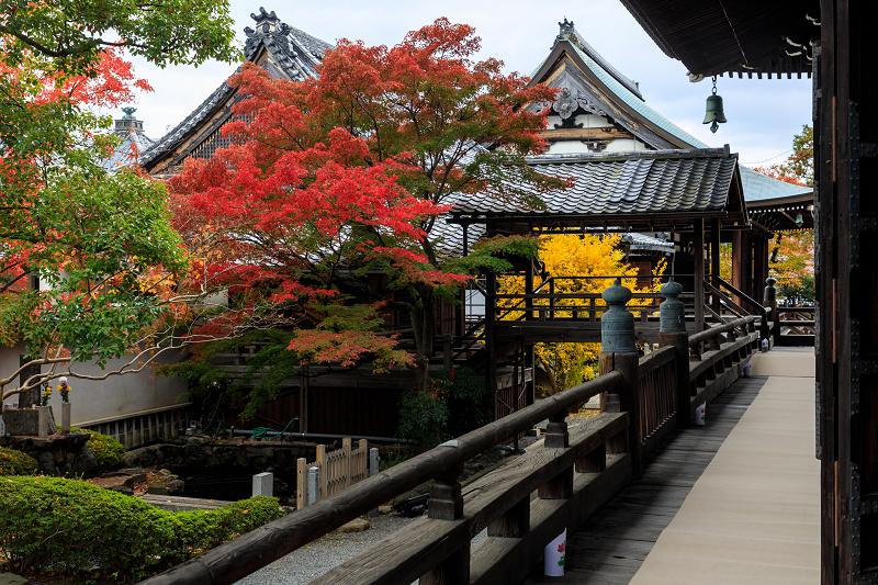 紅葉が彩る京都2019 秋色の妙顕寺_f0155048_23583028.jpg