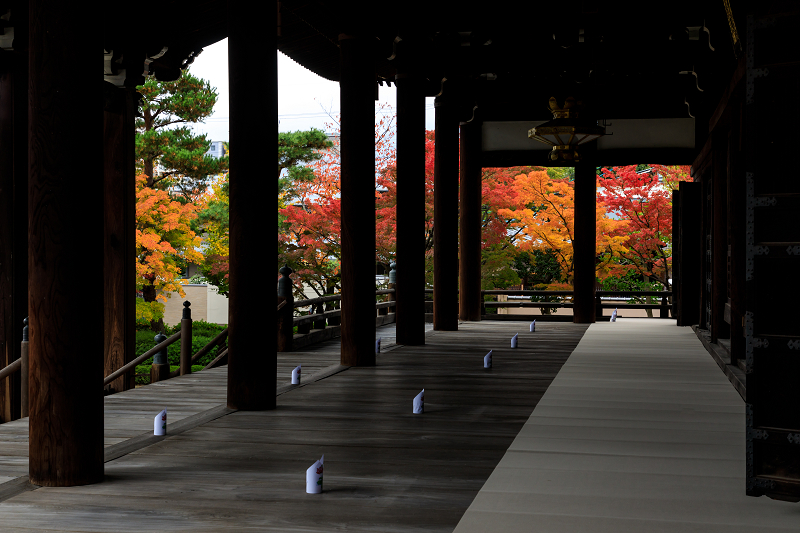 紅葉が彩る京都2019 秋色の妙顕寺_f0155048_23584989.jpg