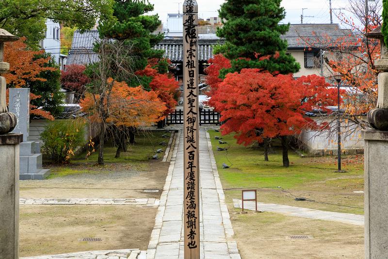 紅葉が彩る京都2019 秋色の妙顕寺_f0155048_23592126.jpg