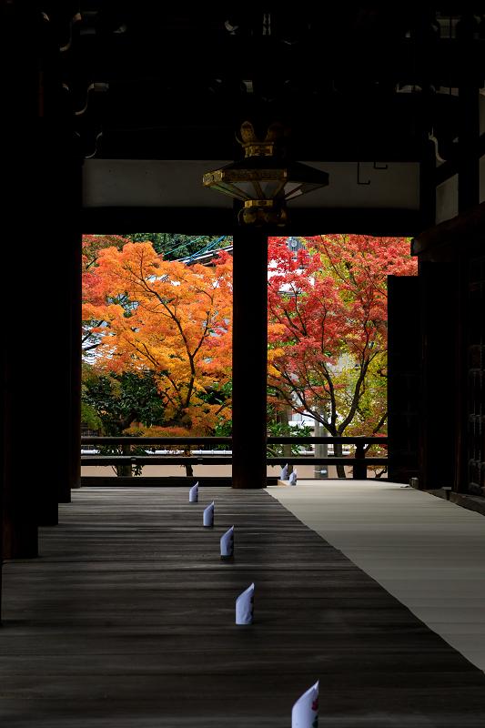 紅葉が彩る京都2019 秋色の妙顕寺_f0155048_2359215.jpg