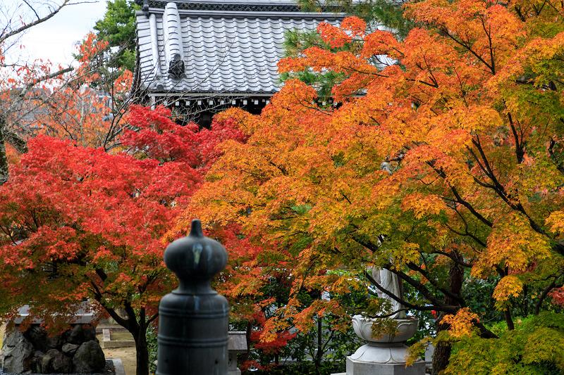 紅葉が彩る京都2019 秋色の妙顕寺_f0155048_23595254.jpg