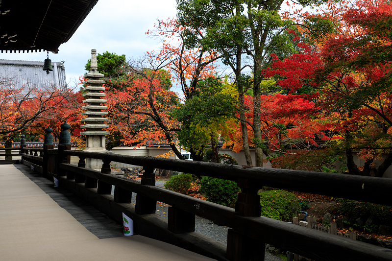 紅葉が彩る京都2019 秋色の妙顕寺_f0155048_2359919.jpg