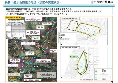 木曽川水系河川整備計画変更原案パブコメと長良川の遊水池計画(2)_f0197754_19482317.jpg