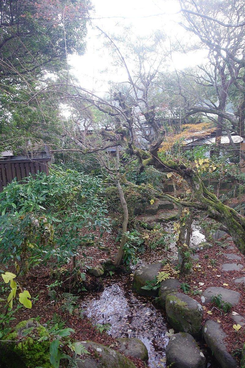 湯回廊 菊屋の庭_c0112559_08440655.jpg