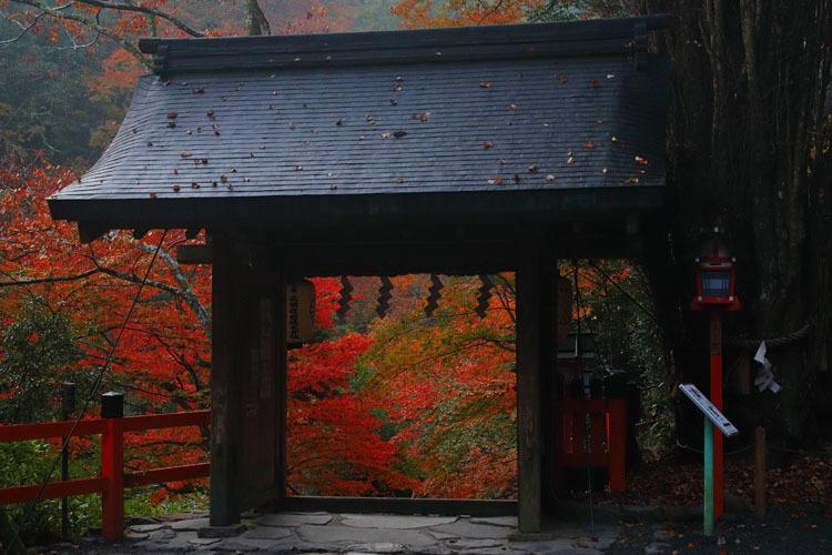 貴船神社_e0051888_22063110.jpg