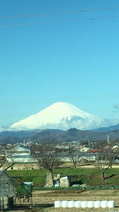 きょうは埼玉県です🌸_c0162404_09390475.jpg