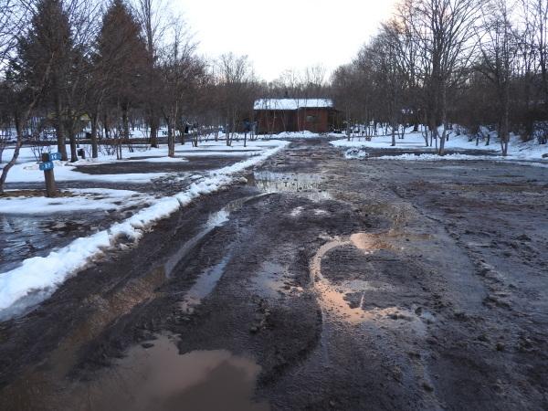 雪が降りました!天気予報、道路状況最新をチェックして(2020年1月28日)_b0174425_13112212.jpg