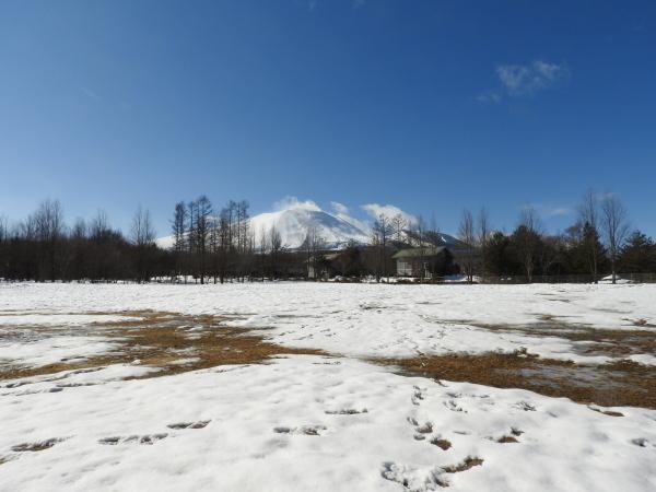 今週末の天気と気温(2020年1月30日):春から冬の気温へ_b0174425_13175135.jpg