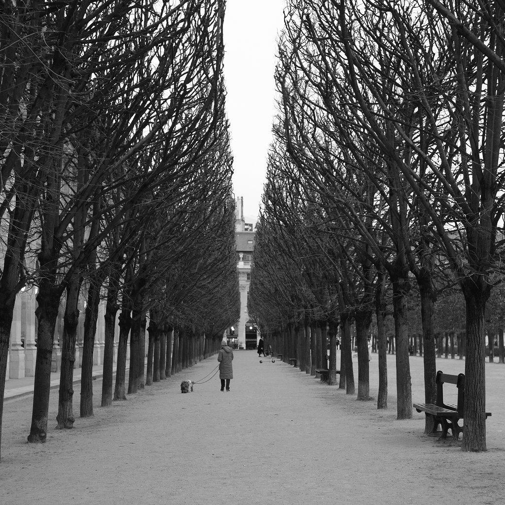 パリ モノクローム_f0050534_23500864.jpg