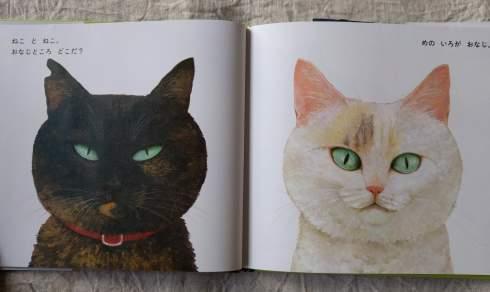 町田尚子さんの新刊絵本「ねことねこ」_a0265743_23241601.jpg