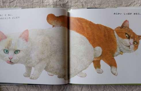 町田尚子さんの新刊絵本「ねことねこ」_a0265743_23243560.jpg