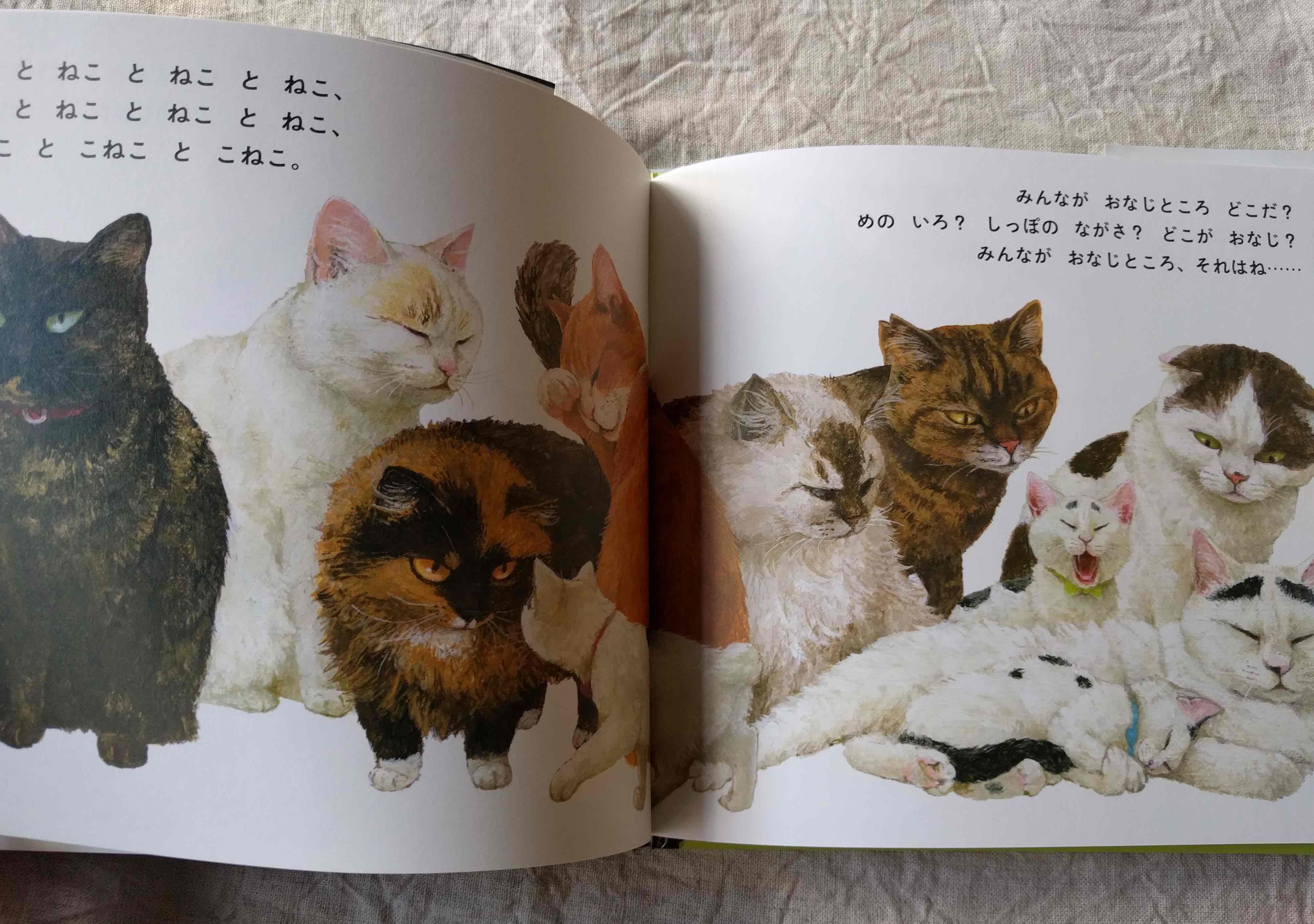 町田尚子さんの新刊絵本「ねことねこ」_a0265743_23244686.jpg