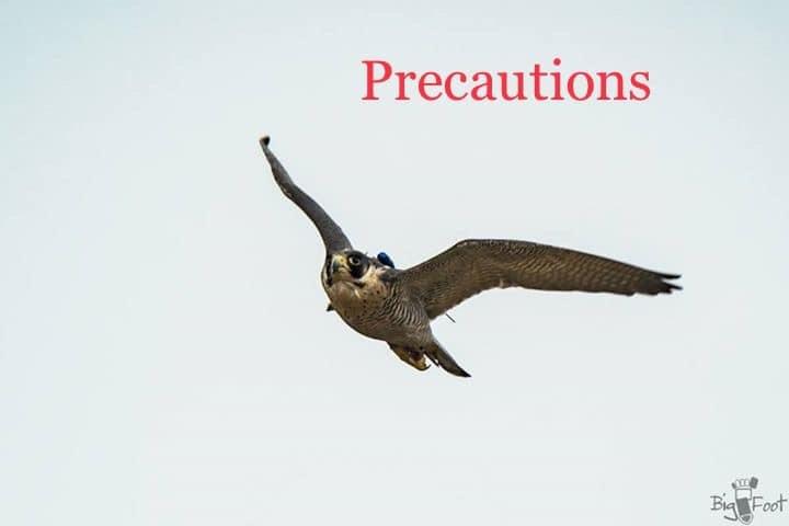 フライトフェスタ2020 での注意事項 -Flight Festa 2020 Precautions -_c0132048_09142138.jpeg