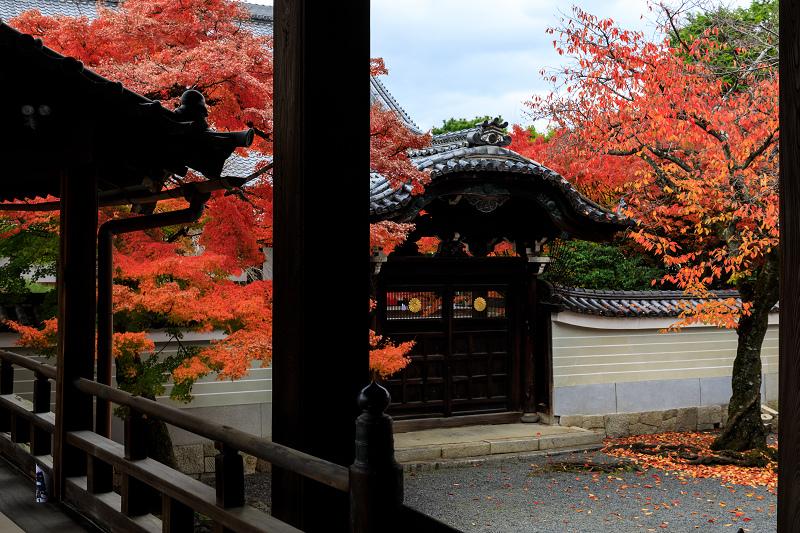 紅葉が彩る京都2019 秋色の妙顕寺_f0155048_0074.jpg