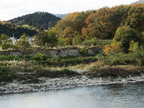 木曽川水系河川整備計画変更原案パブコメと長良川の遊水池計画(3)_f0197754_12322958.jpg