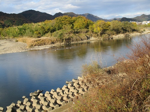 木曽川水系河川整備計画変更原案パブコメと長良川の遊水池計画(3)_f0197754_12341344.jpg