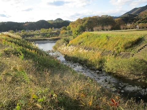 木曽川水系河川整備計画変更原案パブコメと長良川の遊水池計画(3)_f0197754_12365446.jpg