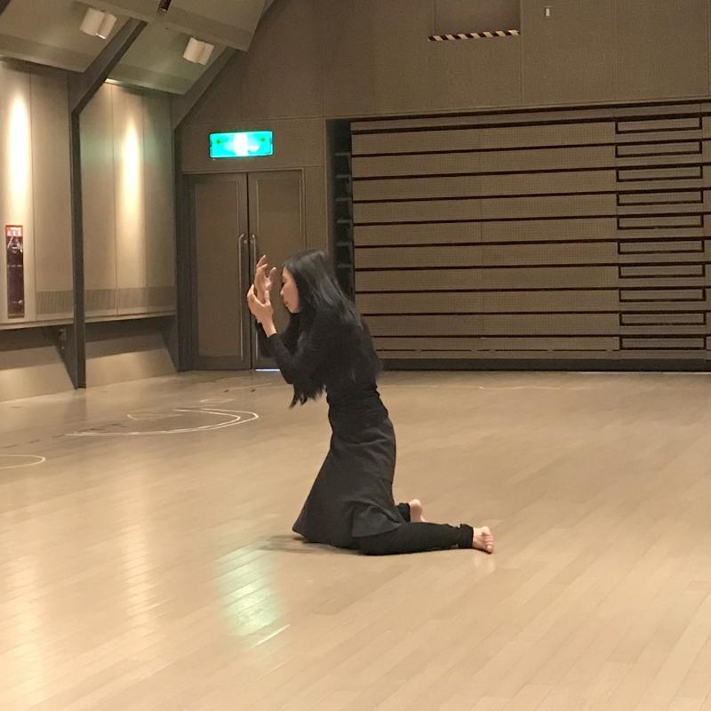 ダンスギャザリング1.26報告_e0124863_22283380.jpg