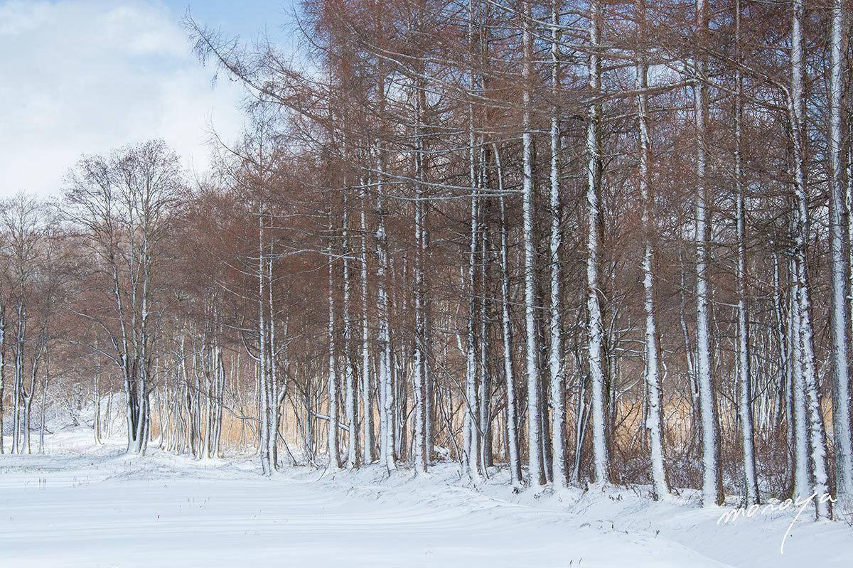 小吹雪の後_c0085877_06164082.jpg
