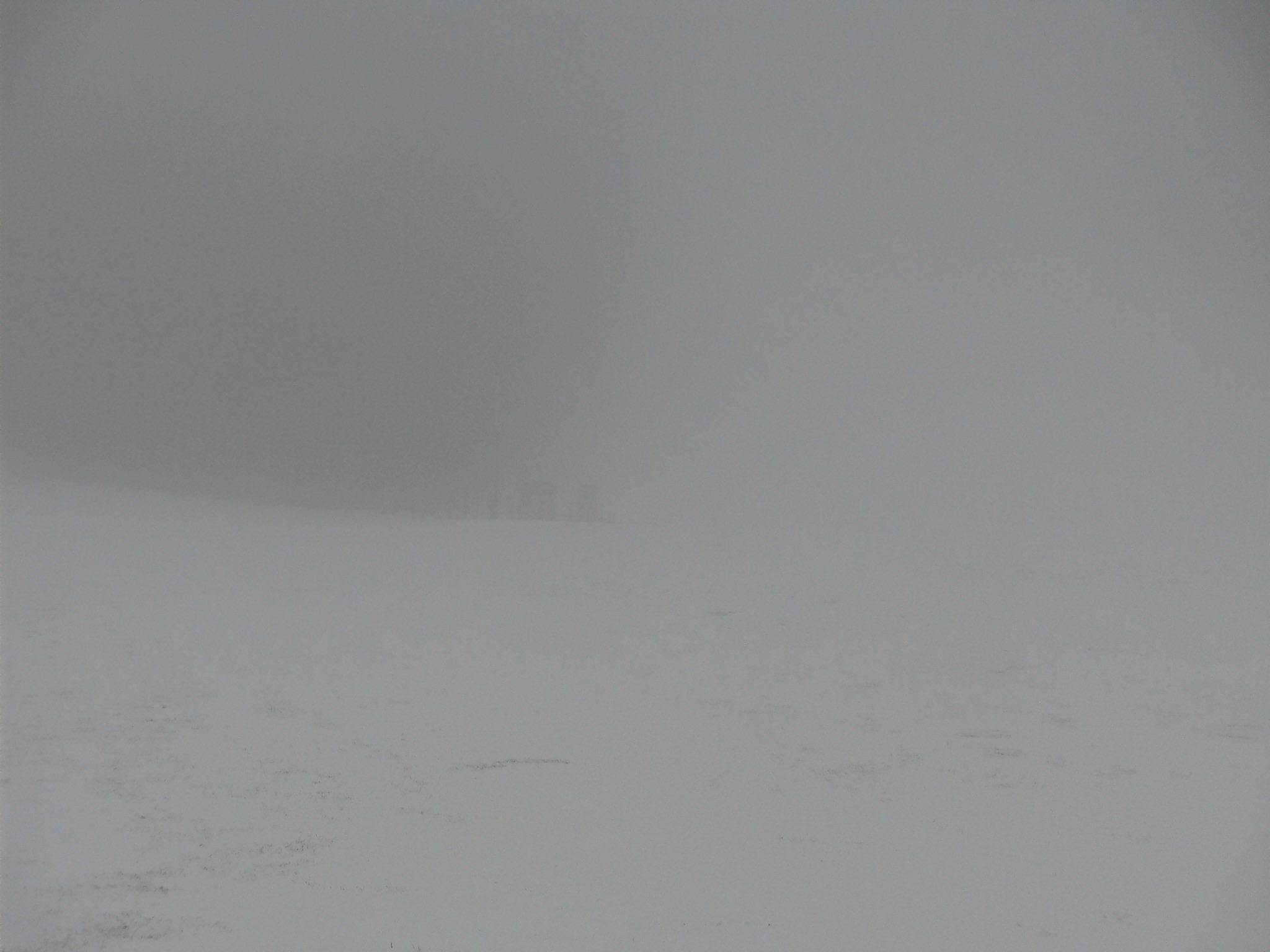 令和2年1月31日(金)天気/雪 気温/-1℃ 積雪/15㎝ ゲレンデ/一部滑走可能_e0306207_08244933.jpg