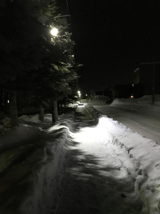 今年は本当に雪が少ない。_a0071514_01180722.jpg