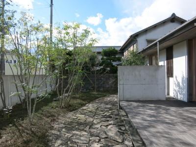 庭の剪定_e0097130_22535404.jpg