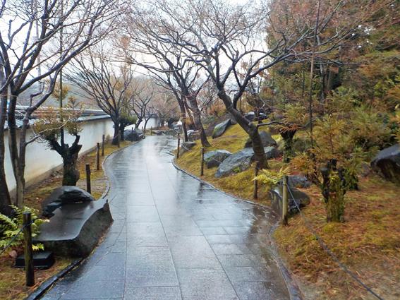冬の雨_f0045132_12023493.jpg