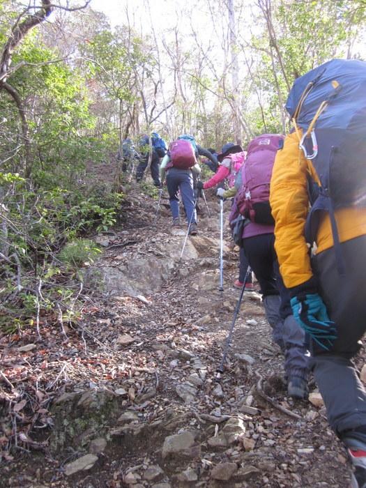京都・愛宕山に登ってきました_c0038434_18535741.jpg
