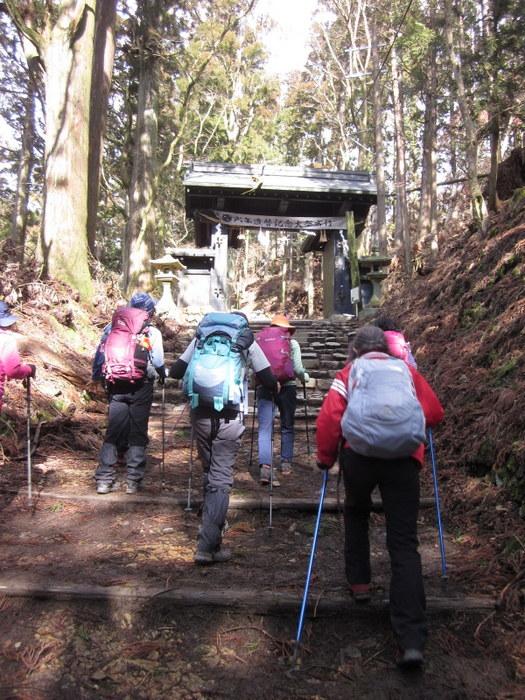 京都・愛宕山に登ってきました_c0038434_18551530.jpg