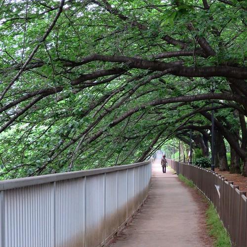 土曜日は鎌倉のファブラボから古石場の落語へ_c0060143_19233450.jpg