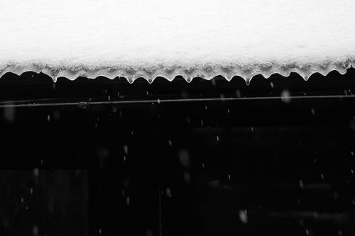 薄らと、針畑雪で雪国・・・トチモチ_d0005250_18115368.jpg
