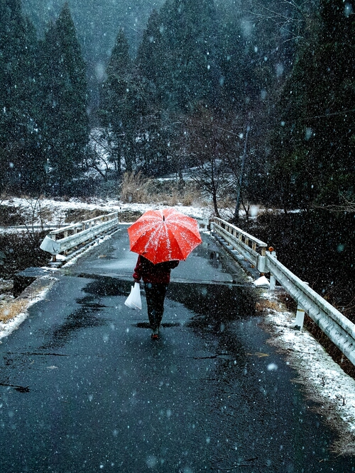 薄らと、針畑雪で雪国・・・トチモチ_d0005250_18141470.jpg