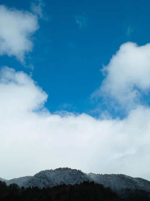 薄らと、針畑雪で雪国・・・トチモチ_d0005250_18154913.jpg