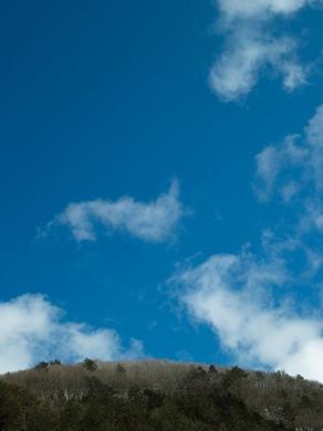 薄らと、針畑雪で雪国・・・トチモチ_d0005250_1816535.jpg