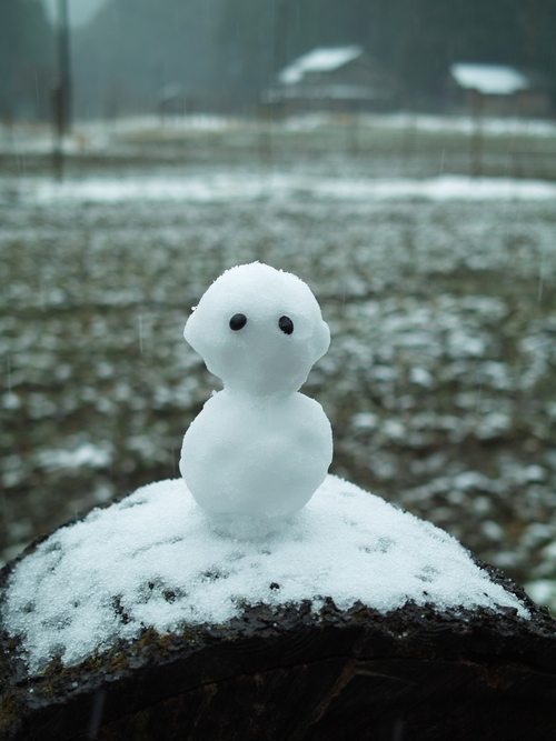 薄らと、針畑雪で雪国・・・トチモチ_d0005250_18173627.jpg