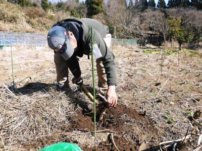 『ダリアの球根』 2020年の販売に向け球根の掘り上げ作業を現地取材!必ず発芽する球根だけを販売(前編)_a0254656_17432678.jpg