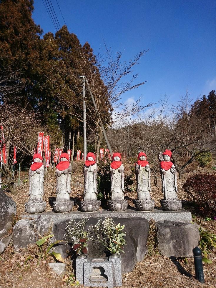 1月30日  木曜日  お寺さん、、、_b0211088_11353561.jpg